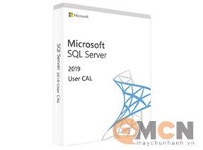 Microsoft SQL Server User CAL 2019 SNGL OLP NL USRCAL